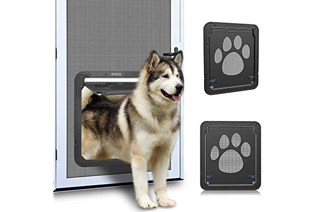 3 Important Benefits of Installing an Automatic Pet Door