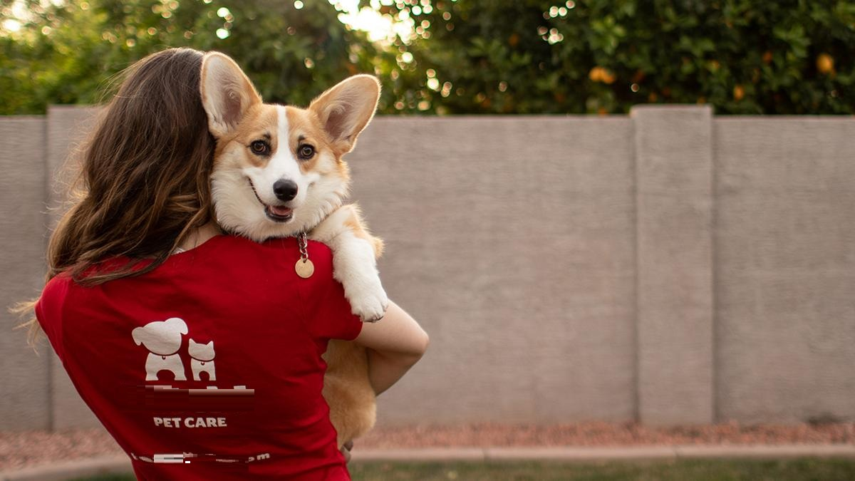 Learn Important Tips To Run A Pet Care Franchise